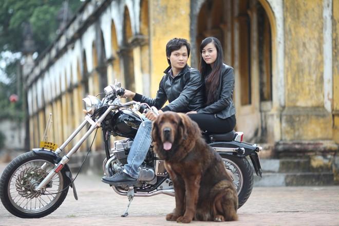 8X Việt nuôi chó đắt nhất hành tinh thành đại gia - 10