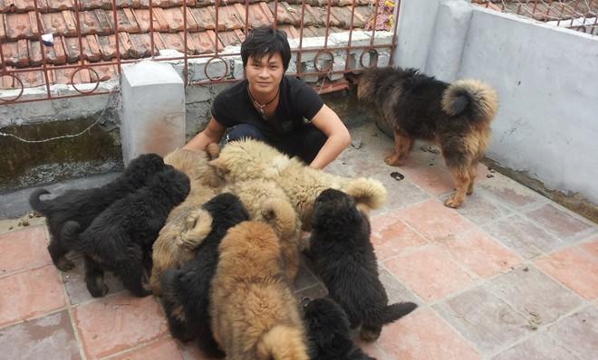 8X Việt nuôi chó đắt nhất hành tinh thành đại gia - 2