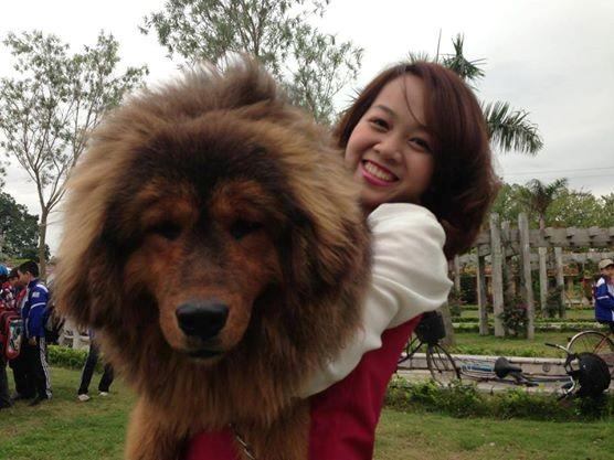 8X Việt nuôi chó đắt nhất hành tinh thành đại gia - 8