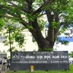 Giáo dục - du học - Kiến nghị Bộ GD&ĐT vào cuộc vụ lùm xùm tại ĐH Hoa Sen
