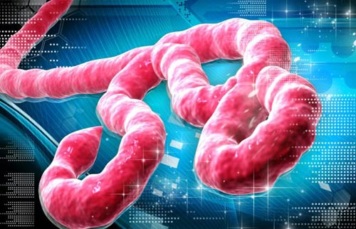 """Khủng bố bằng """"bom bẩn"""" Ebola: Ác mộng toàn cầu? (Kỳ 2) - 1"""