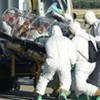 Siết nhập khẩu động vật để chặn dịch Ebola