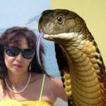 """Phi thường - kỳ quặc - Người phụ nữ hôn mê vì chụp ảnh """"tự sướng"""" với rắn độc"""