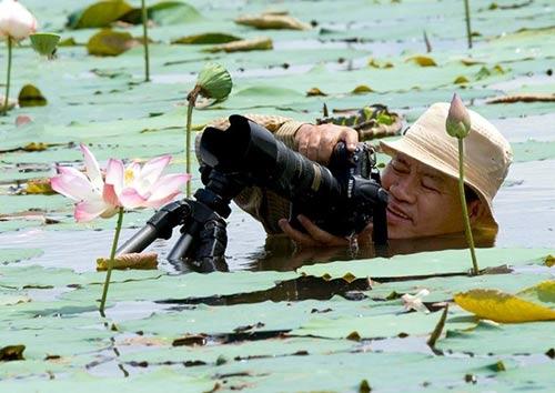 Doanh nhân mê chụp sen, lập 2 kỷ lục Việt Nam - 2