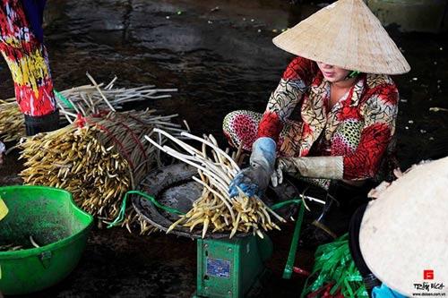 Doanh nhân mê chụp sen, lập 2 kỷ lục Việt Nam - 4