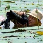 Tài chính - Bất động sản - Doanh nhân mê chụp sen, lập 2 kỷ lục Việt Nam