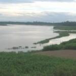 Tin tức trong ngày - Đi tắm sông, hai anh em trai chết đuối
