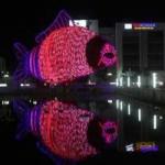 Tin tức trong ngày - Đèn lồng cá chép khổng lồ đón Rằm Trung thu ở Hà Nội