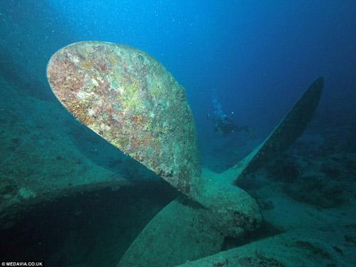 Phát hiện kho xe cổ dưới lòng đại dương - 3