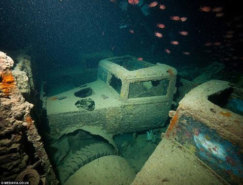 Phát hiện kho xe cổ dưới lòng đại dương - 4