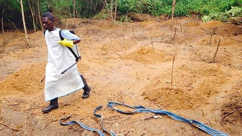 """""""Thần y"""" ở Tây Phi làm lây nhiễm Ebola cho 848 người - 2"""
