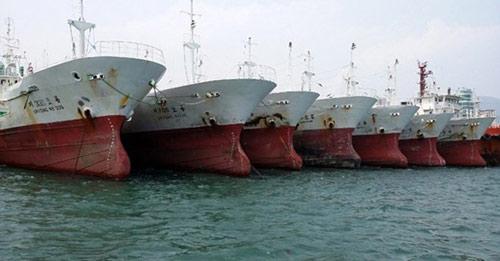 """Tại sao Bộ NN&PTNT """"bác"""" đề xuất nhập tàu cũ ngàn tỷ? - 1"""