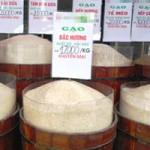 Sức khỏe đời sống - Kinh hãi gạo thơm nhưng cơm… độc!
