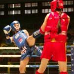 """Thể thao - Khán giả """"mãn nhãn"""" với màn đấu võ Muay"""