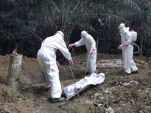 5 loại virus tử thần còn nguy hiểm hơn cả Ebola - 1