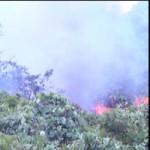 Tin tức trong ngày - Cháy lớn kèm theo tiếng nổ trên rừng Nam Hải Vân