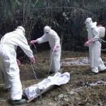 Sức khỏe đời sống - Đã có 225 nhân viên y tế nhiễm virus Ebola