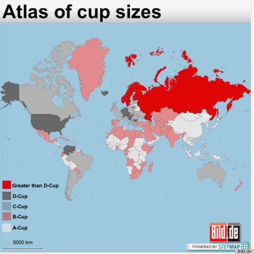 Phụ nữ châu Á có ngực nhỏ nhất thế giới - 1