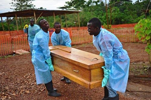 Đã tìm ra nguồn gốc lây nhiễm dịch Ebola - 1