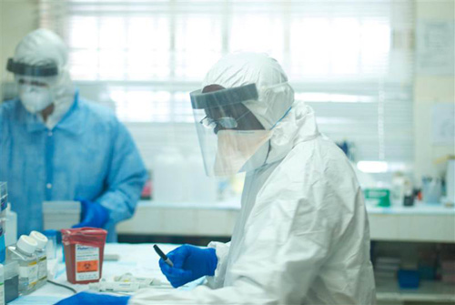 Đã tìm ra nguồn gốc lây nhiễm dịch Ebola - 2