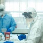 Tin tức trong ngày - Đã tìm ra nguồn gốc lây nhiễm dịch Ebola