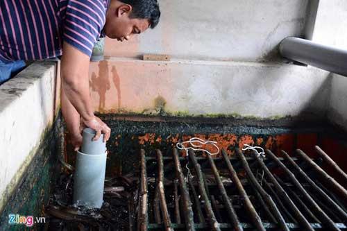 Kiếm 300 triệu/tháng nhờ nuôi lươn không bùn ở Sài Gòn - 5