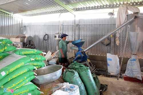 Kiếm 300 triệu/tháng nhờ nuôi lươn không bùn ở Sài Gòn - 7