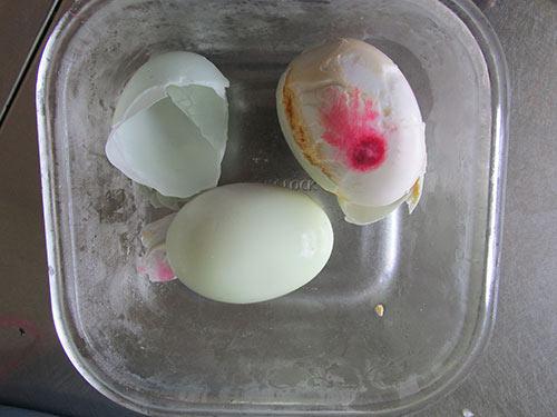Xôn xao trứng vịt có màu bất thường - 1