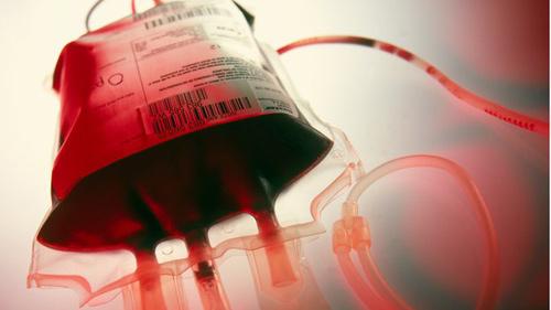 WHO khuyên dùng máu của người sống sót để trị Ebola - 1