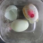 Tin tức trong ngày - Xôn xao trứng vịt có màu bất thường