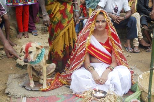Ảnh ấn tượng: Thiếu nữ 18 tuổi kết hôn với chó - 4