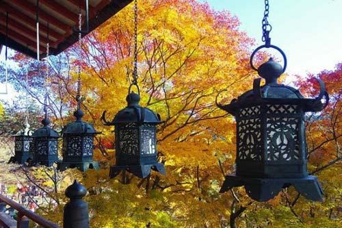 Ngắm mùa thu nhuộm vàng thế giới - 1