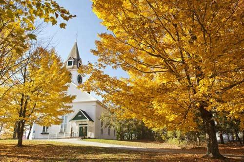 Ngắm mùa thu nhuộm vàng thế giới - 4