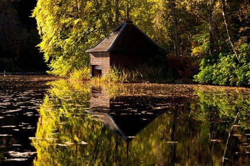 Ngắm mùa thu nhuộm vàng thế giới - 8