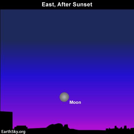 """Tối nay, sẽ có """"mặt trăng thu hoạch và siêu mặt trăng"""" - 1"""