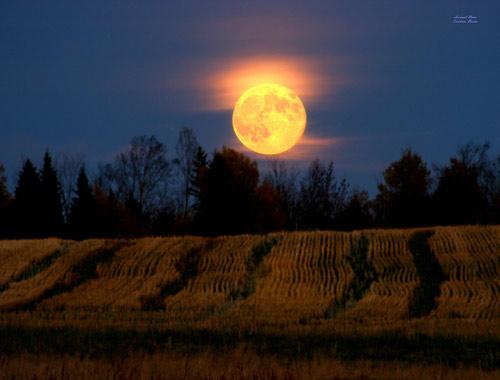 """Tối nay, sẽ có """"mặt trăng thu hoạch và siêu mặt trăng"""" - 2"""
