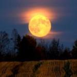 """Phi thường - kỳ quặc - Tối nay, sẽ có """"mặt trăng thu hoạch và siêu mặt trăng"""""""
