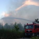 Tin tức trong ngày - Cháy lớn gần sân bay Đà Nẵng, 800 người dập lửa