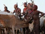 Phi thường - kỳ quặc - Những tục lệ dành cho đàn ông kinh dị nhất thế giới