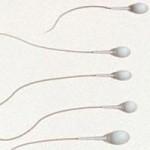 Sức khỏe đời sống - Thuốc tiêm ngừa thai mới dành cho đàn ông