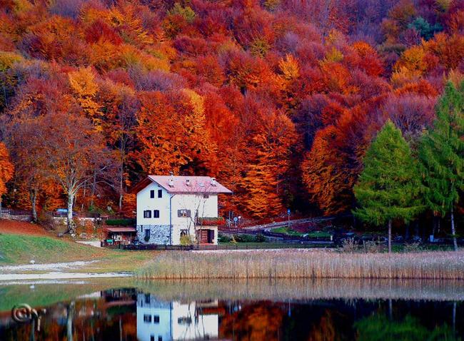 1. Ngôi nhà nhỏ nép mình giữa khu rừng mùa thu đỏ rực lá ở miền Bắc nước Ý.