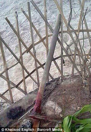 2 du khách Anh chết ở Thái Lan: Xuất hiện tình tiết mới - 4