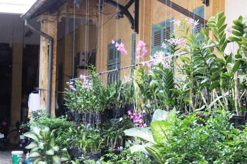 Biệt thự 100 tuổi ở Sài Gòn rao bán 35 triệu đô - 10