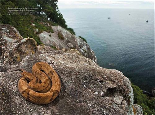 10 hòn đảo kỳ lạ nhất thế giới - 5