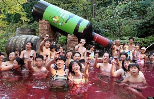 Bơi trong rượu, tắm trong trà ở Nhật Bản - 3