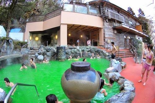 Bơi trong rượu, tắm trong trà ở Nhật Bản - 5