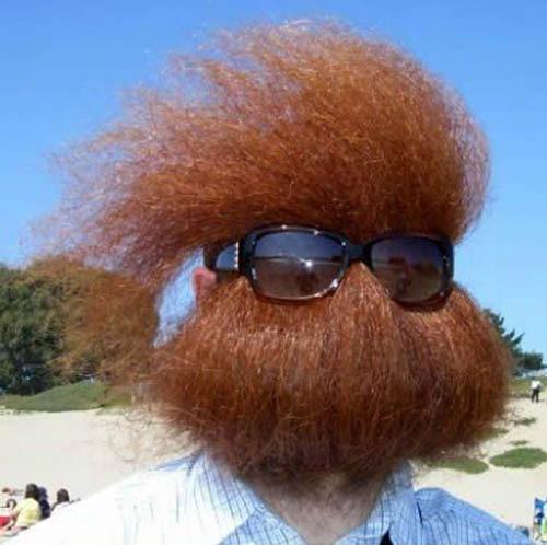 Cẩn thận nhìn nhầm nhé: râu đấy - 1