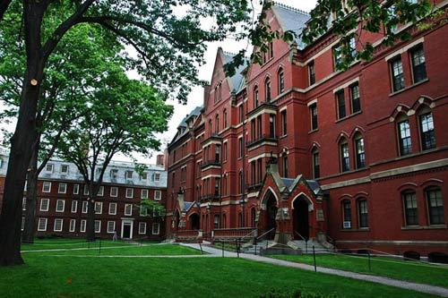 Các tỷ phú của thế giới thường tốt nghiệp đại học nào? - 2