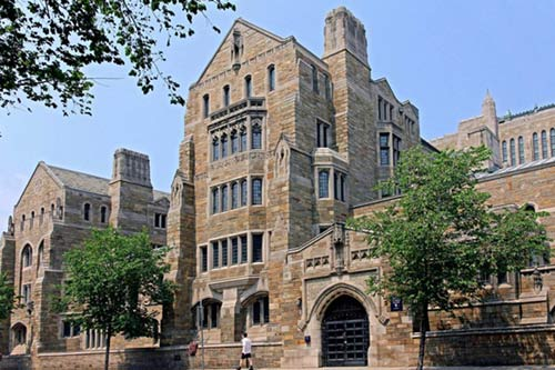 Các tỷ phú của thế giới thường tốt nghiệp đại học nào? - 3