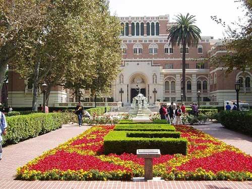 Các tỷ phú của thế giới thường tốt nghiệp đại học nào? - 4